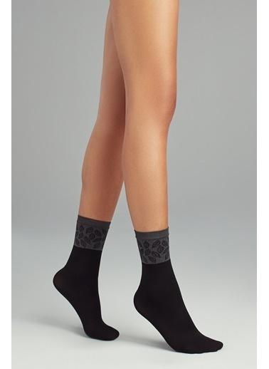 Penti Kadın Siyah Nature Soket  Çorap PCDP11MA19SK Siyah